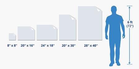 Window Decals Sizes